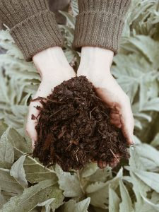 Aerobic Microbial Compost in grower's hands